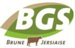 logo BGS