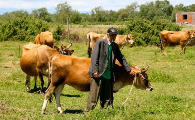 tour du monde jersais – Jersiaise en Albanie