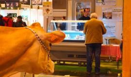 La Jersiaise et ses produits laitiers bientôt à Paris !