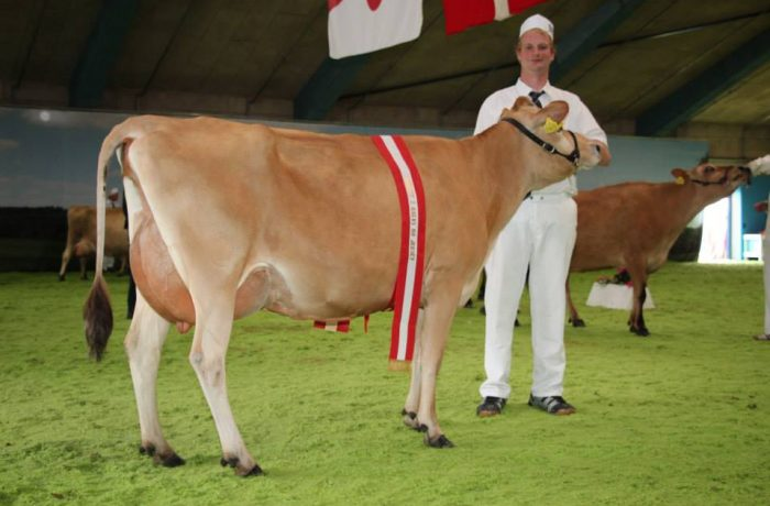 Concours National Danois – 29 juin 2017