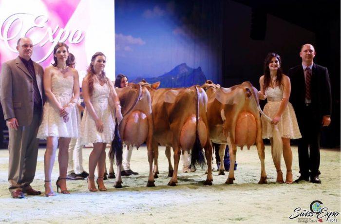 Swiss Expo : Doublé pour l'EARL Hyson Voillot !