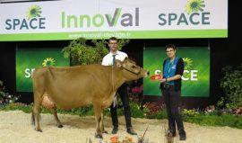 SPACE 2018 : Hulsa (VJ Huls) élue Grande Championne pour la 2ème année consécutive !