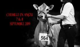 3e Concours National Jersiais – 7&8 septembre 2019