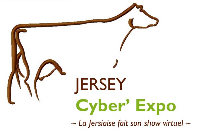 Jersey Cyber' Expo ~ La Jersiaise fait son show virtuel ~